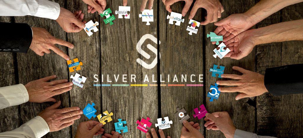 Puzzle Silver Alliance