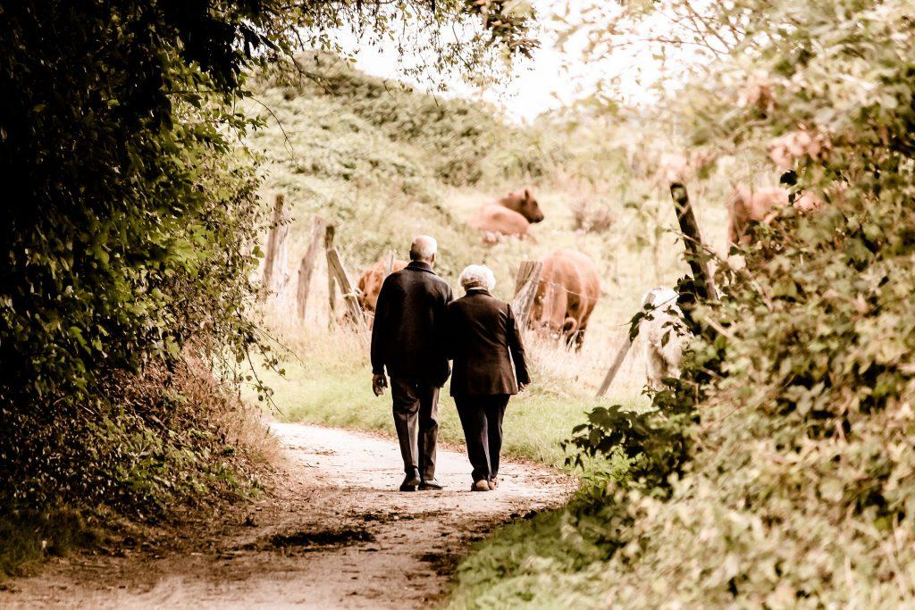 Couple de senior marchant dans la campagne