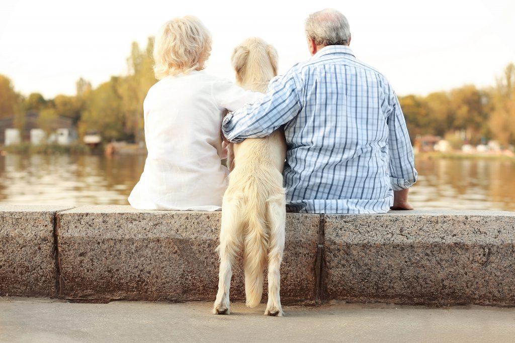 Couple senior avec son chien