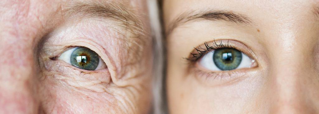 Deux regards côte à côte d'une grand mère et de sa petite fille.